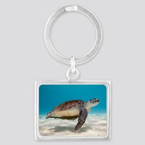 Sea Turtle Keychains