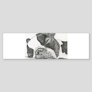 boston graphite Bumper Sticker
