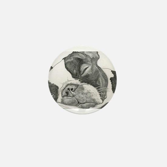 boston graphite.jpg Mini Button