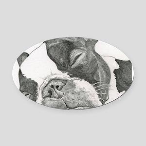 boston graphite Oval Car Magnet