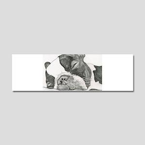 boston graphite Car Magnet 10 x 3