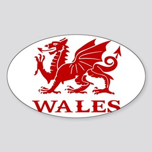 cymru wales welsh cardiff dragon Sticker