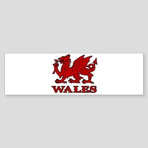 cymru wales welsh cardiff dragon Bumper Sticker