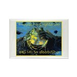 Froggies Have Rights Too Rectangle Magnet (10 pack