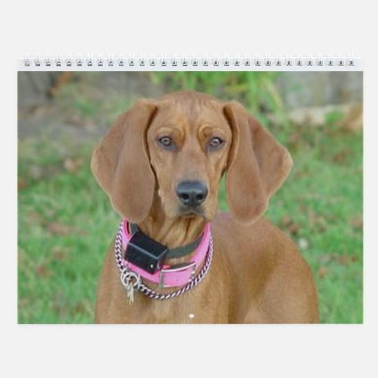 Cute Dogs Wall Calendar