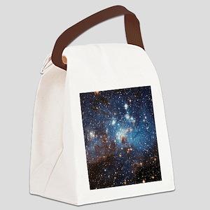 LH_95 Canvas Lunch Bag