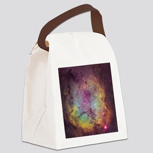 IC 1396 Canvas Lunch Bag