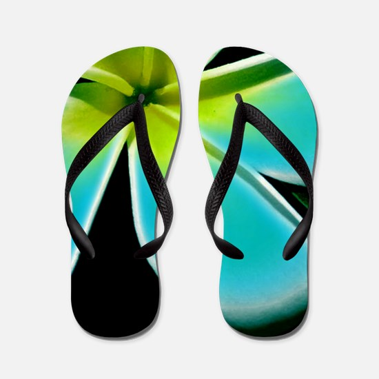 Turquoise Yellow White Flower Flip Flops