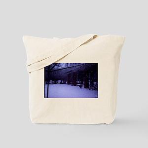 PICT0054 Tote Bag