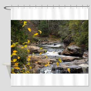 Iris Field Shower Curtain