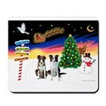 XmasSigns/2 Border Collies Mousepad