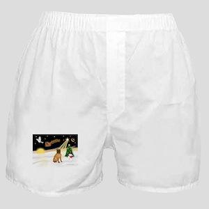 Night Flight/Shar Pei #3 Boxer Shorts