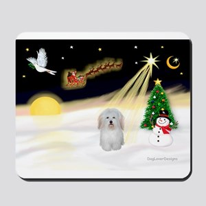 Night Flight/Coton De Tulear Mousepad