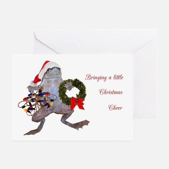 Christmas Frog Greeting Cards (Pk of 20)