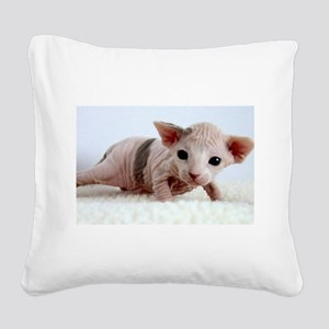 sphynx kitten Square Canvas Pillow