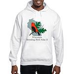 Atlas Pullover Hooded Sweatshirt (white/grey)