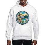 St Francis/Am Eskimo #3 Hooded Sweatshirt