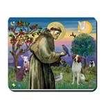 St. Fran. / Brittany Mousepad