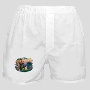 St.Francis #2/ Shar Pei (#2) Boxer Shorts