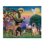 St Francis/Shar Pei #5 Throw Blanket