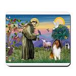 St Francis / Collie Mousepad