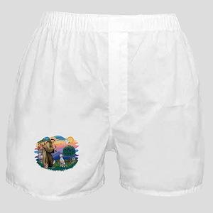 St Francis #2/ Dalmatian Boxer Shorts