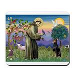 St. Francis Dobie Mousepad