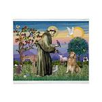 St Francis Golden Throw Blanket