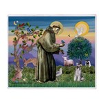 St.Francis / Mini. Schnauzer Throw Blanket
