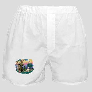 St.Francis #2/ Tibetan Span Boxer Shorts