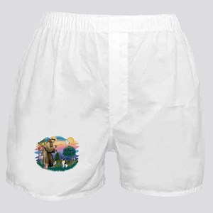 St.Francis #2/ Toy Fox Ter. Boxer Shorts