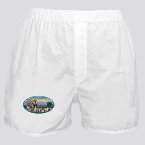St Francis / dogs-cats Boxer Shorts