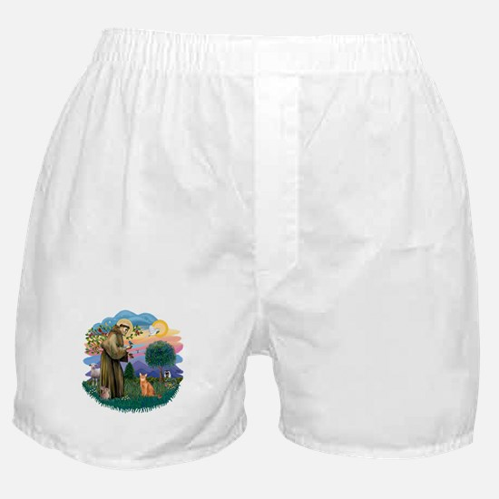 StFran(f)-Abyssin. (rd) Boxer Shorts