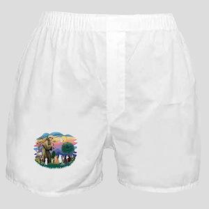 St Francis 2 - 7 Cats Boxer Shorts