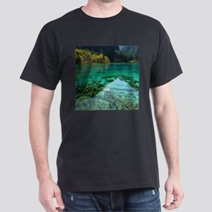 JIUZHAIGOU VALLEY 2 T-Shirt