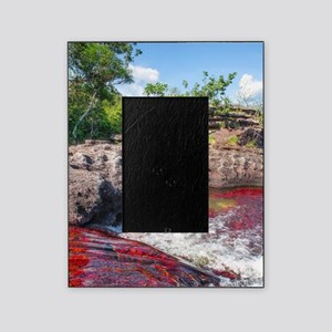 CANO CRISTALES 2 Picture Frame