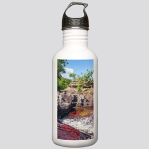 CANO CRISTALES 2 Stainless Water Bottle 1.0L