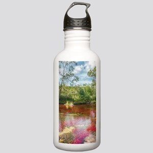 CANO CRISTALES 3 Stainless Water Bottle 1.0L