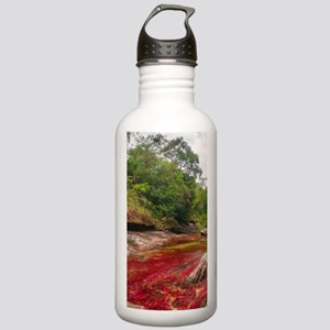 CANO CRISTALES 1 Stainless Water Bottle 1.0L