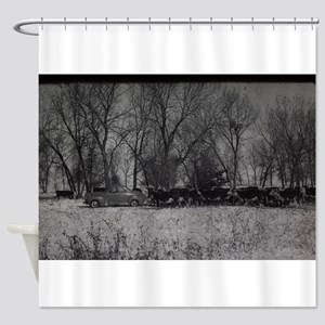 old farm scene with cows and truck Shower Curtain
