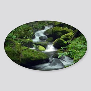 Summer Forest Brook Sticker (Oval)