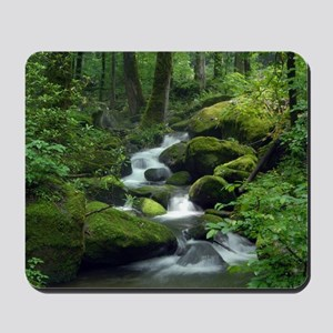 Summer Forest Brook Mousepad
