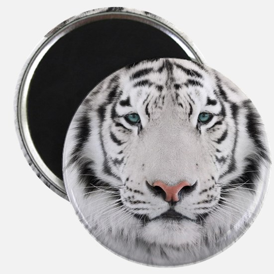 White Tiger Head Magnet