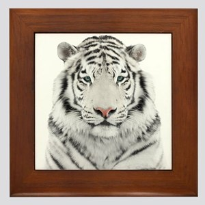 White Tiger Head Framed Tile
