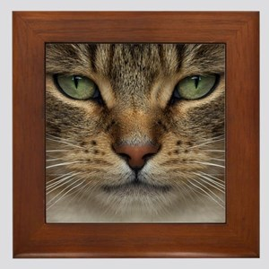 Tabby Cat Face Framed Tile
