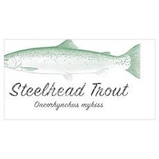 Steelhead Trout Vintage Poster
