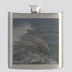 Dolphin20151020 Flask