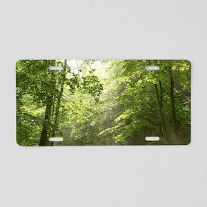 Spring Forest Mist Aluminum License Plate