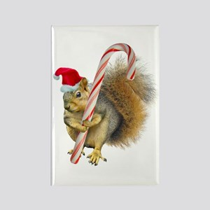Squirrel Candy Cane Magnets