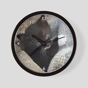 PRETTY BLUE-EYED KITTY Wall Clock